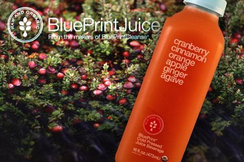 Review: BluePrint's New Seasonal Variety