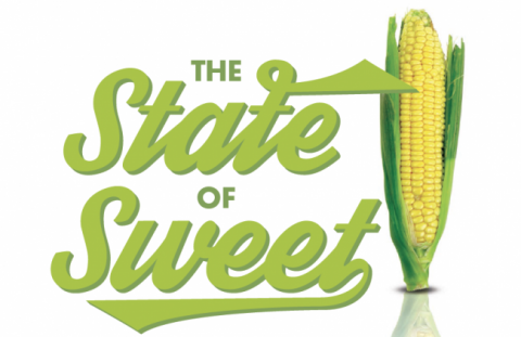 The State of Sweet