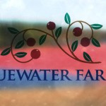 Review: Bluewater Farms Cranberry Juice