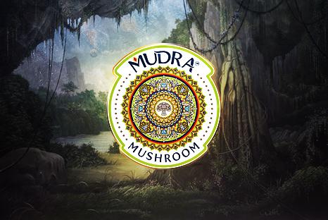 Review: Mudra Mushroom