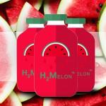 Review: H2Melon