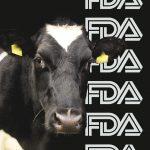 Identity Crisis Brews For Alt-Milks As Congress Pushes FDA Scrutiny