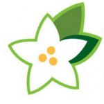 Steviva Ingredients Earns Organic Certification