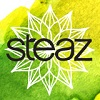 Steaz Revamps Packaging, Goes Green Tea-Based in All Products