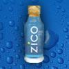 zico_100