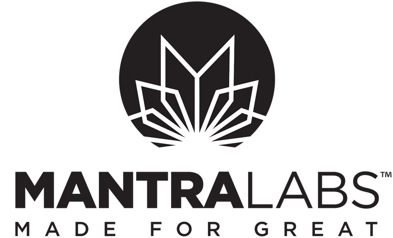 Digital Marketing Director - MANTRA Labs