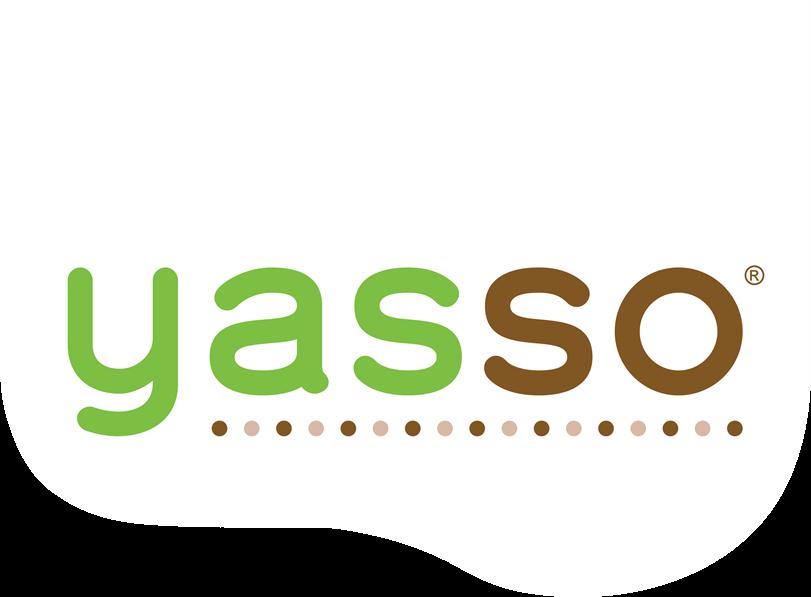 Director of Category Development - Yasso Frozen Greek Yogurt