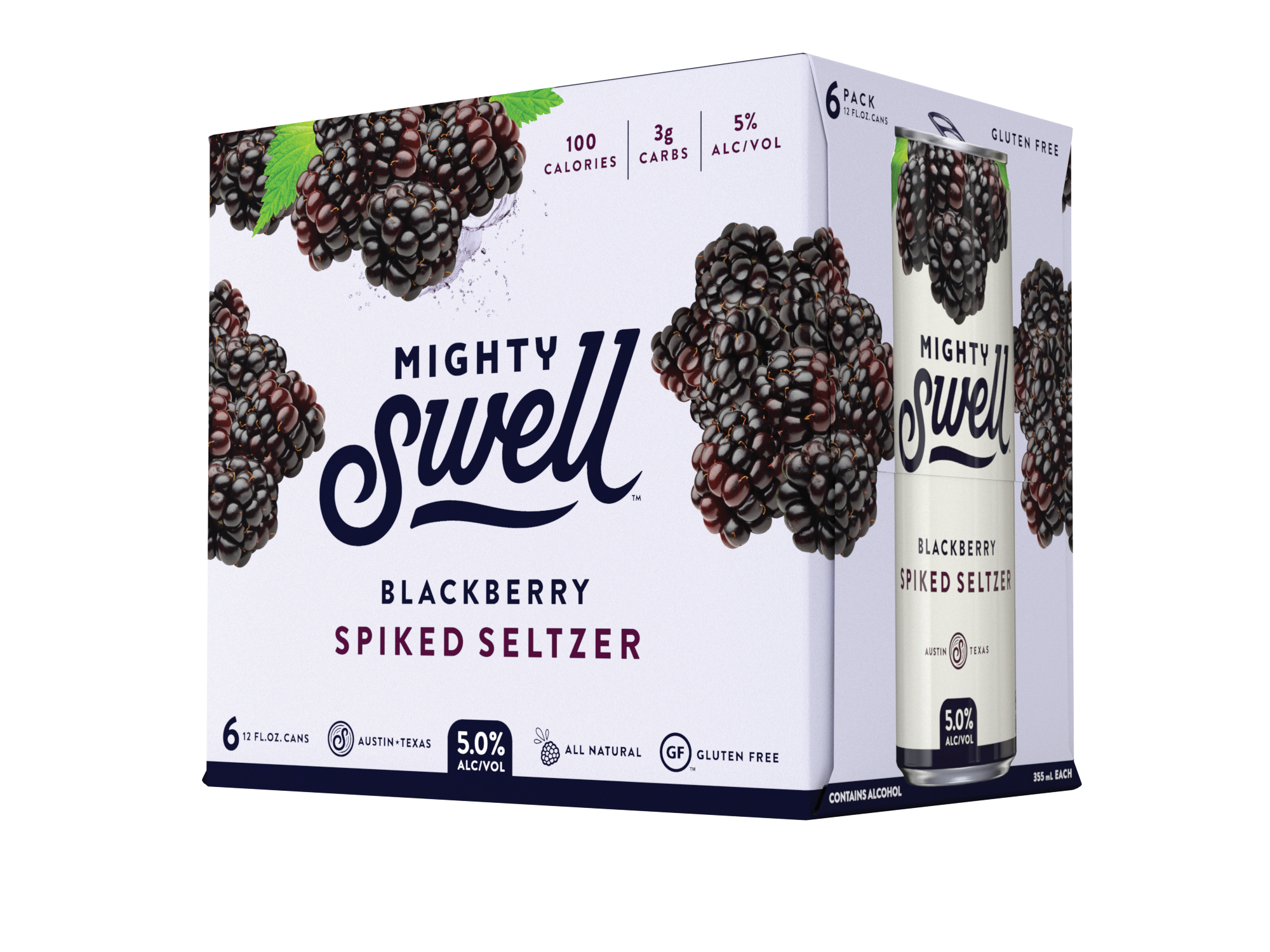 Mighty Swell Blackberry Spiked Seltzer | 6 Pack