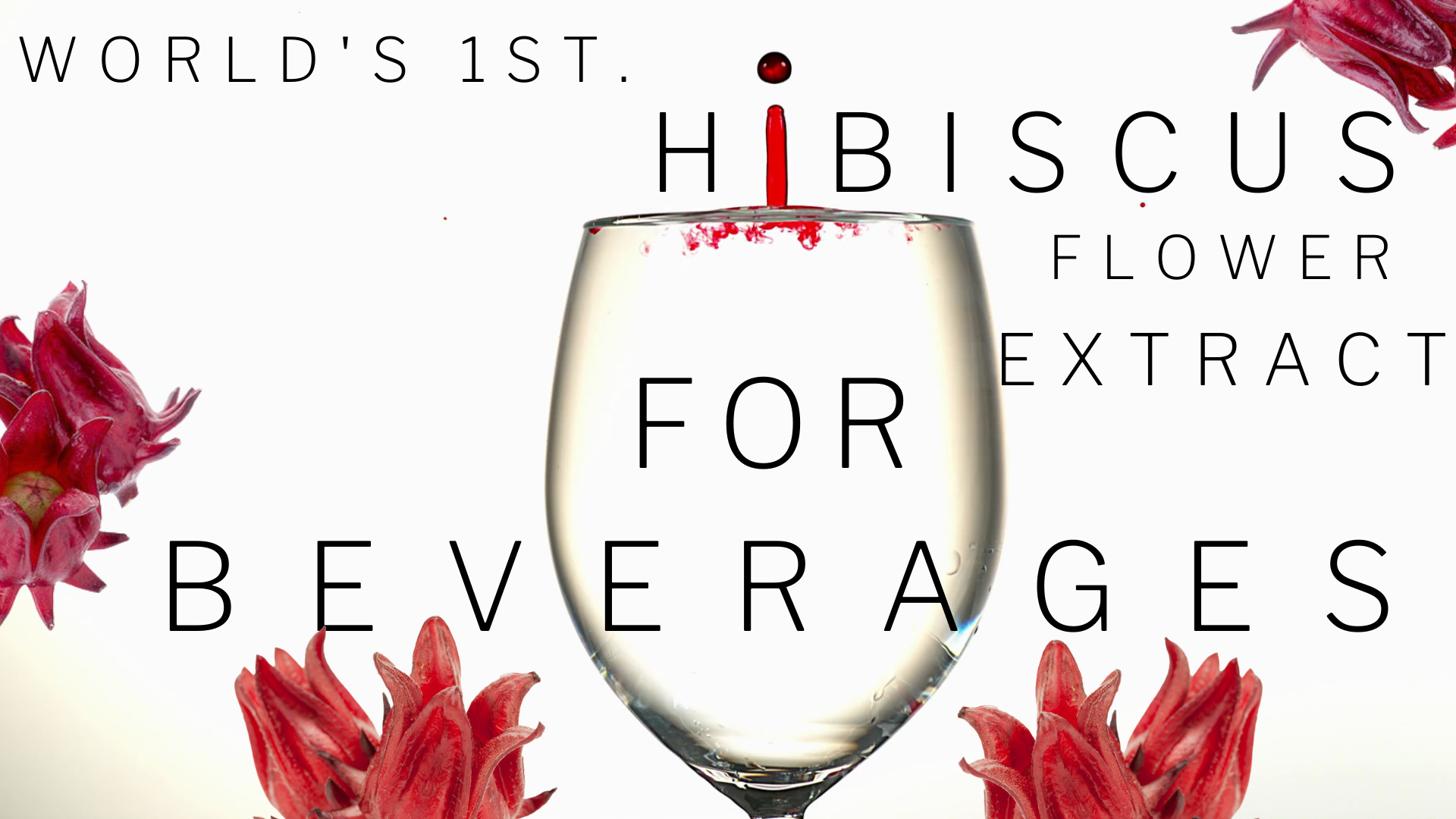 Hibiscus Farm: World's 1st. Hibiscus Flower Extract for Beverages