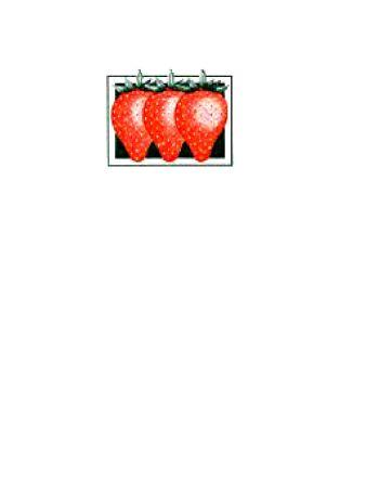 Kendall Fruit Est. 1939