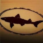 Dogfish Head Distilling Co. Debuts Spirits Portfolio