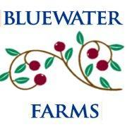 Bluewater Farms Expands Line with 16oz Grab-N-Go Cranberry Juices