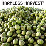 "Harmless Harvest Settles Lawsuit Questioning Legitimacy of Organic Certification, ""Vigorously"" Denies Allegations"