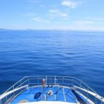 Artesian Fijian Spring Water SAVU to Launch at the 27th Annual Berkeley Springs International Water Tasting