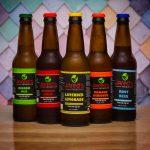 Review: Jared's Probiotics' Water Kefir Soda