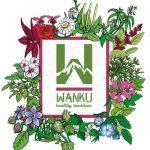 Ecuadorian Healing Water, WanKu, Launches in U.S.