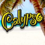 PE Firm Acquires Calypso Lemonade Maker