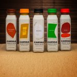 Review: Canvas Barley Milk