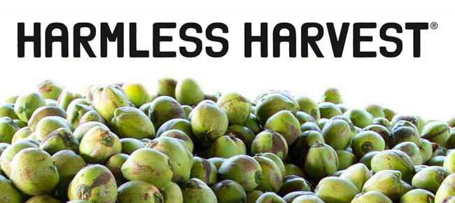 CEO Giannella Alvarez Leaves Harmless Harvest - BevNET com