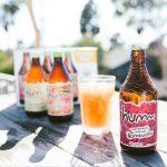 Humm Develops Non-Alcoholic Kombucha Brewing Process