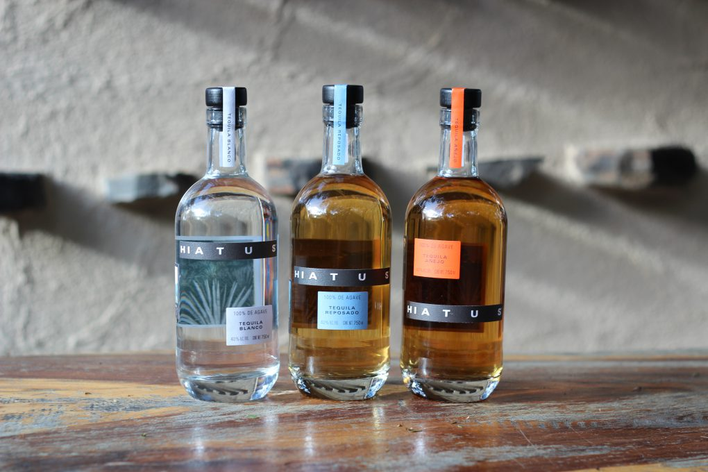 Initiative Tequila Glas-agave Feinschmecker