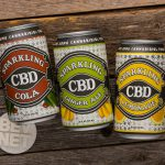 Review: Sparkling CBD Beverages