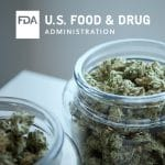 FDA Holds First Hearing on Cannabis Products