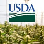 USDA Issues Final Rule for Hemp Production
