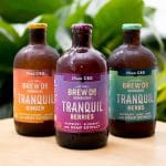 Brew Dr. Launches CBD-Infused Kombucha Line 'Tranquil'