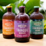 Review: Brew Dr. Kombucha Tranquil with CBD