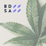 BDSA: U.S. Cannabis Sales to Surpass $24 Billion This Year
